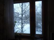 окно деревянное двухстворчатое,