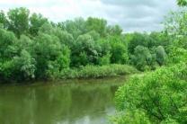 Участок у реки