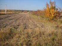 Предлагается земельный участок 22 сотки