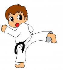 Каратэ Kyokushinkai детям у вас дома.