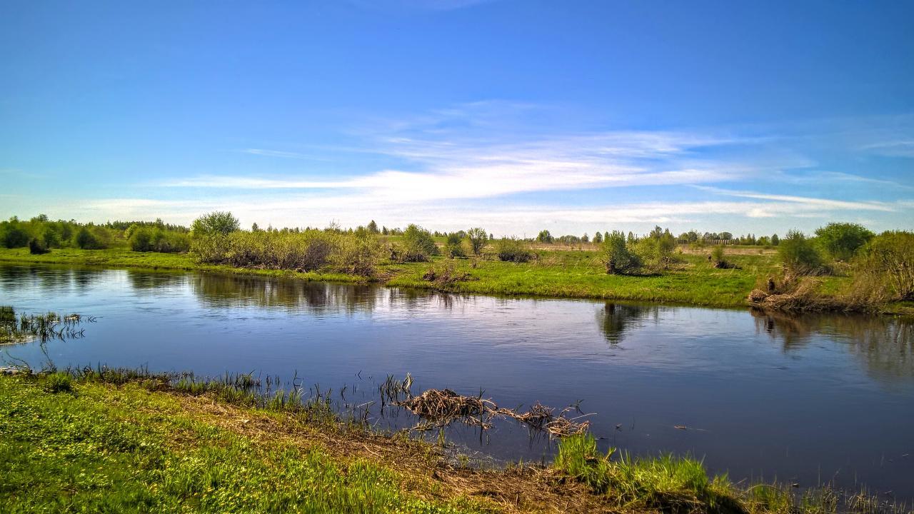 Участок 2 Га. на берегу реки Утроя с идеальным подъездом   фото 1 из 6