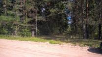 Шикарный участок на лесной поляне под строительство   фото 6 из 6