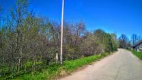 Участок 2 Га. на берегу реки Утроя с идеальным подъездом   фото 3 из 6