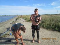 Приглашаем отдохнуть и полечиться на берегу моря Крым Саки | фото 2 из 6