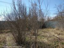Земельный участок 24 сотки в д. Чапаевка | фото 3 из 6