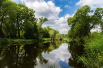 Участок в экологически чистом районе подмосковья | фото 2 из 5