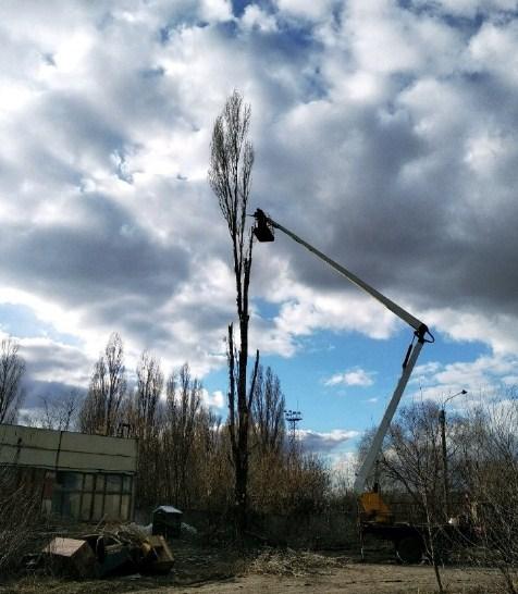 Спил деревьев. Расчистка участков. Покос травы | фото 1 из 1