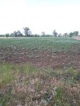 Частное фермерское хозяйство ищет