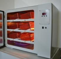 Домашний инкубатор на 120 куриных яиц ИПХ-12   фото 3 из 3