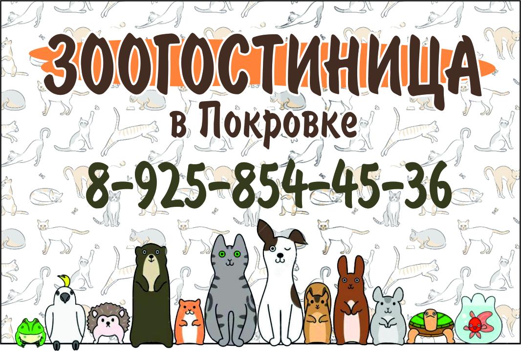 Зоогостиница в Покровке. Клинский район, МО   фото 1 из 3