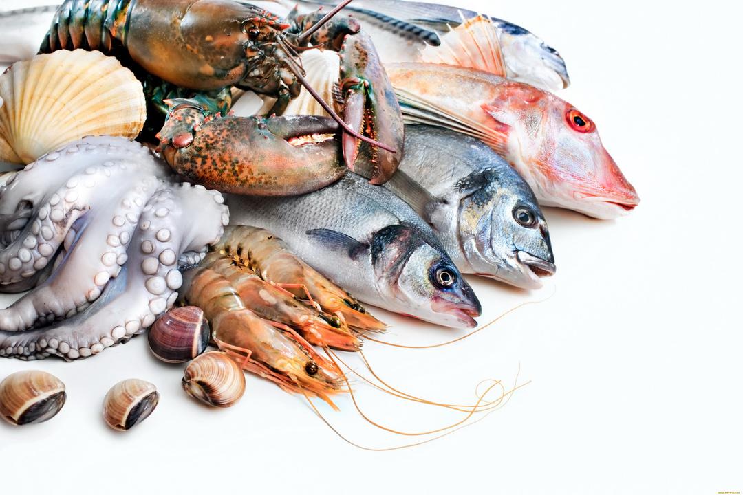 Рыба, ракообразные, моллюски оптом от ООО «Решение»   фото 1 из 1