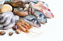 Рыба, ракообразные, моллюски оптом от ООО «Решение»