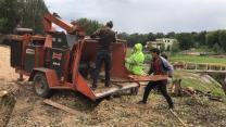 Расчистка полей, газопровода, лэп, от мелколесья и деревьев   фото 4 из 5