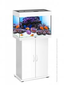 Магазин аквариумов Seaprice в Москве. Аквариумы, террариумы, оборудование для аквариумов, рыбки и аксессуары.