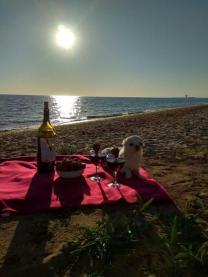 Отдых в Заозерье Евпатория Крым  | фото 6 из 6