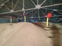 Аэратор зерновой (производство) | фото 3 из 4