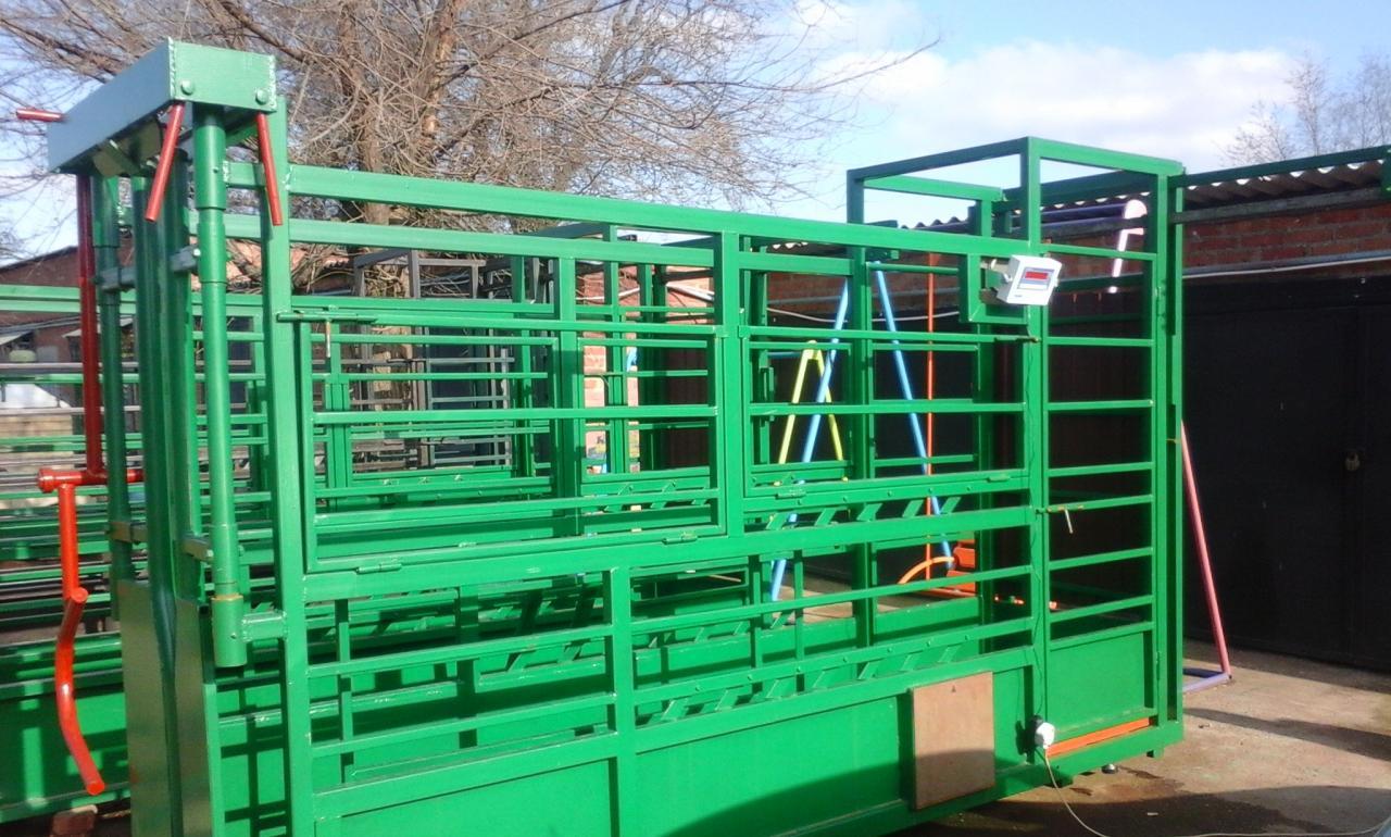 Раскол для фиксации КРС, взвешивания, ветеринарной обработки  быков, коров, телят.    фото 1 из 1