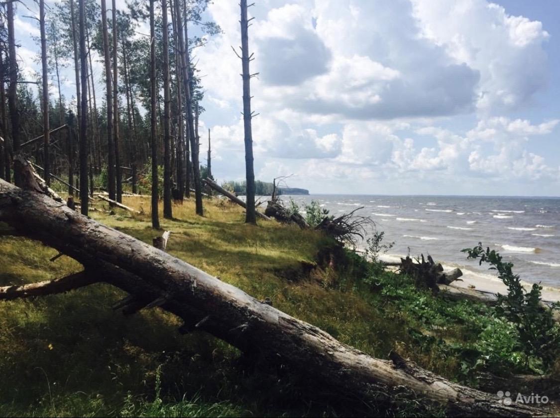 Участок 7,5 гектар 1 береговая линия | фото 1 из 3