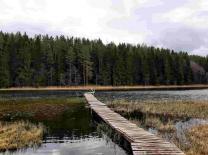 Чудесный участок 53 сотки у живописного озера под Печорами