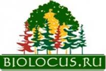 Биолокус – питомник саженцев деревьев и растений, продажа, доставка и посадка
