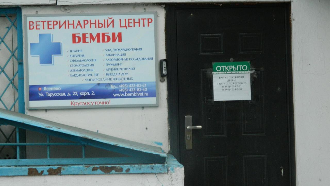 Ветклиника Бемби в Ясенево. | фото 1 из 1