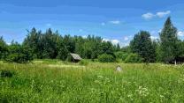 Большой зимний дом хуторного типа, 1 гектар земли  | фото 2 из 6