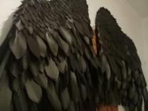 ЧЕРНЫЕ КРЫЛЬЯ Напрокат. САМАРА  Для фотосессий,  Черные крылья, материал - изолон.  Размах 1,60, высота 1,20  На фотографиях, как сами крылья, так и примеры фотосессий.    | фото 2 из 6