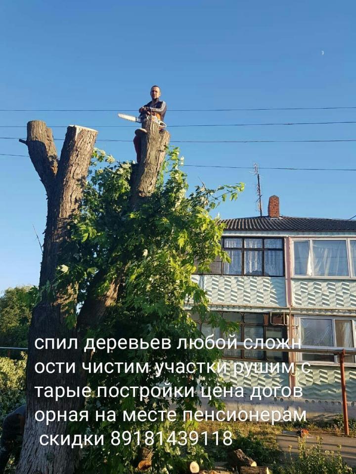 Спил Деревьев Любой Сложности    фото 1 из 1