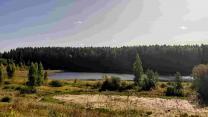 Шикарный участок 50 соток рядом с красивым озером под Печорами  | фото 2 из 6