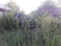 продаётся земля с домом | фото 5 из 6