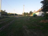 продаётся земля с домом | фото 6 из 6