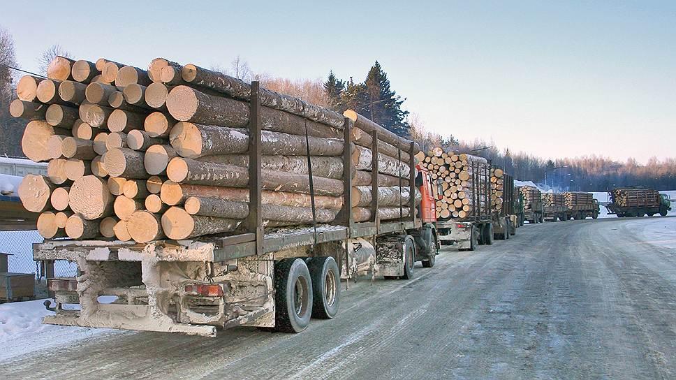 Требуются услуги лесовоз | фото 1 из 1