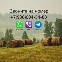 Сдается 2-х км квартира по адресу: пгт Карымское, Верхняя 7 | фото 2 из 6