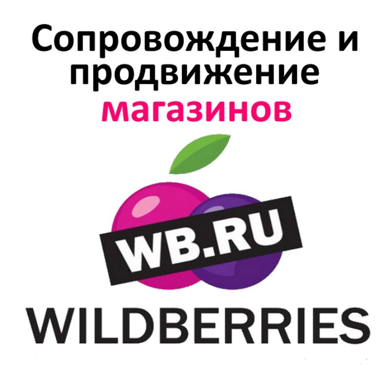Ведение и продвижение магазинов на Wildberries | фото 1 из 1