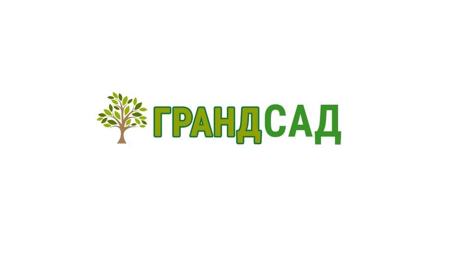 Саженцы плодовых и декоративных деревьев и кустарников из питомника   фото 1 из 1