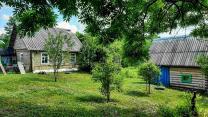 Крепкий домик с хорошей баней в хуторного типа деревушке под Псковом  | фото 2 из 6