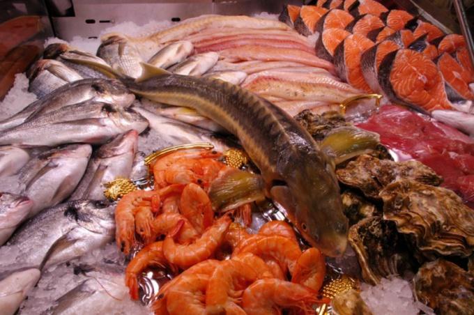 ООО «ИСТА» Торговля оптовая рыбой, ракообразными и моллюсками | фото 1 из 1