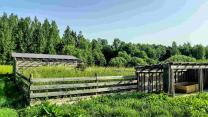 Добротный дом с хоз-вом и баней на хуторе под Псковскими Печорами   фото 6 из 6