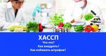 Контроль качества продуктов питания (ХАССП) (ISO) 22000   фото 3 из 3