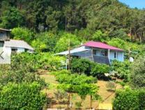 Абхазия жилье частный сектор недорого Цандрипш